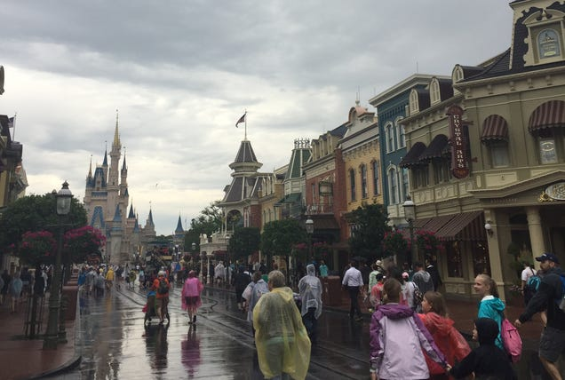 A Newcomer's Take On Disney World