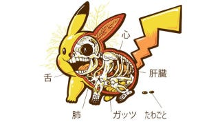 Illustration for article titled Another Look at Pikachu's Bones