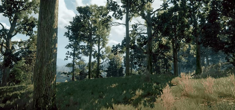 The Witcher 3's Wind Is Beautiful