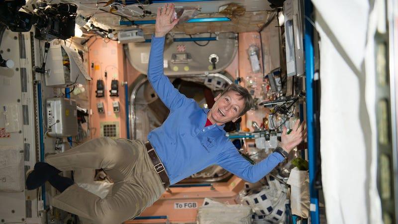 Image: Peggy Whitson/NASA Johnson via Flickr