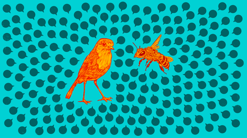 Illustration for article titled Have Sex 'Micro Talks' With Your Kid