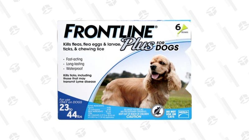 20% Off Frontline Plus | Chewy