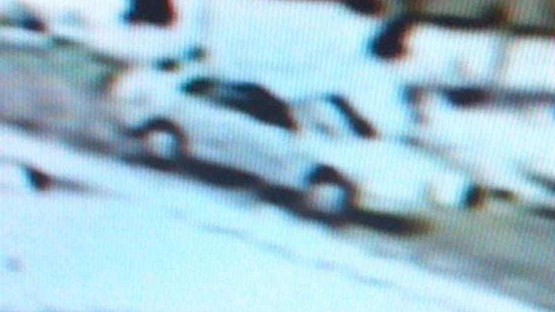 Illustration for article titled Help Identify The Car That Might Have Killed A Man And His Dog