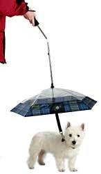 Illustration for article titled Pet Umbrella