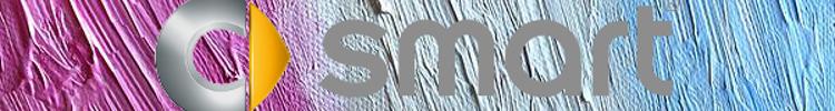 Miss Mercedes' Diary logo