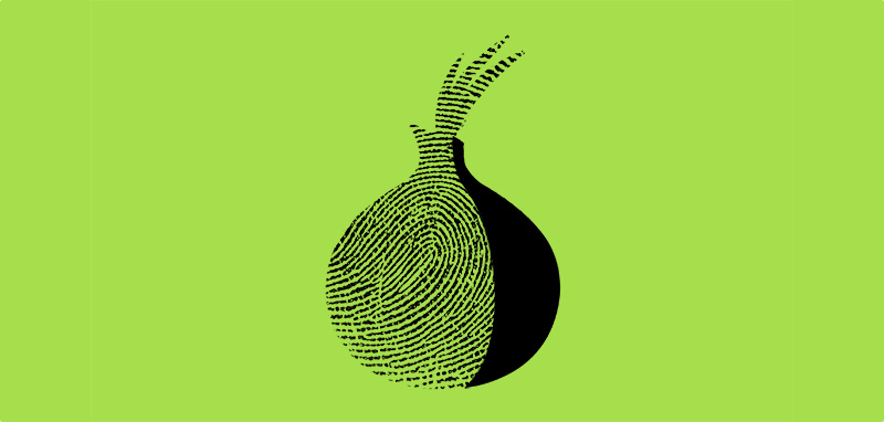 Illustration for article titled Un programador español descubre cómo reconocer a alguien en Tor: con el movimiento del ratón
