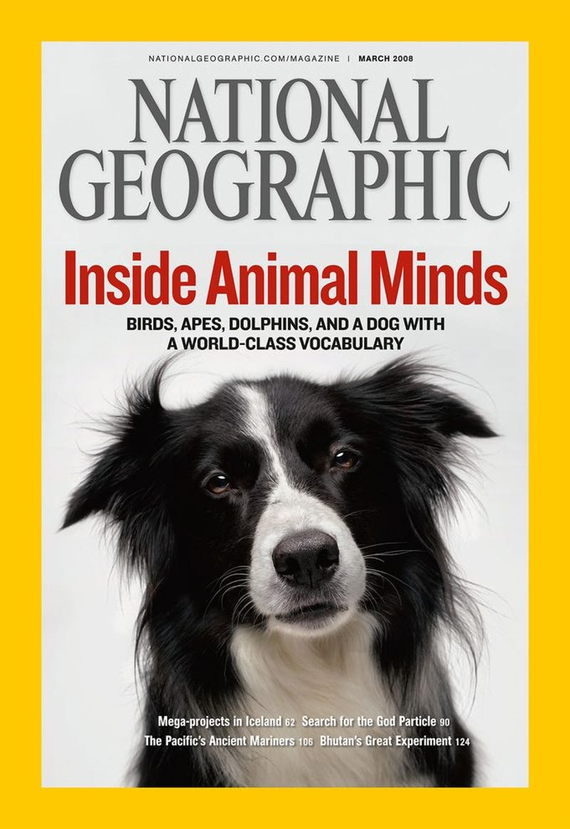 the best most iconic national geographic covers