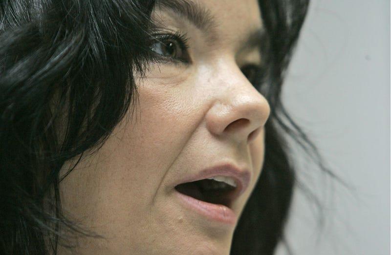 Illustration for article titled Listen to Björk's Great, Woman-Vocalist-Propelled DJ Set
