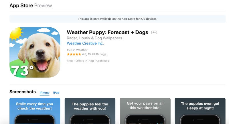 "Illustration for article titled Assorted Reviews Of The iOS Weather Application ""Weather Puppy: Forecast + Dogs"""