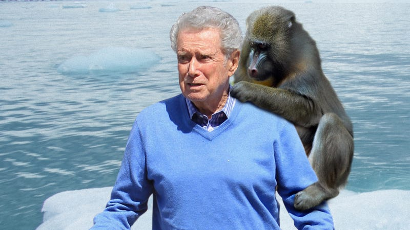 Illustration for article titled Environmental Crisis: This Photo Of A Baboon Eating The Bugs Out Of Regis Philbin's Hair On A Tiny Chunk Of Melting Ice Shows The Utter Devastation Of Climate Change