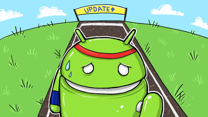 Illustration for article titled Slow Down: Why Fast Android Updates Don't Matter Anymore
