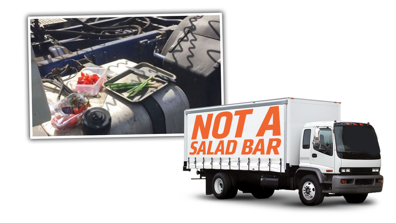 Illustration for article titled Truck Driver Fined For Making A Salad On The Side Of The Highway