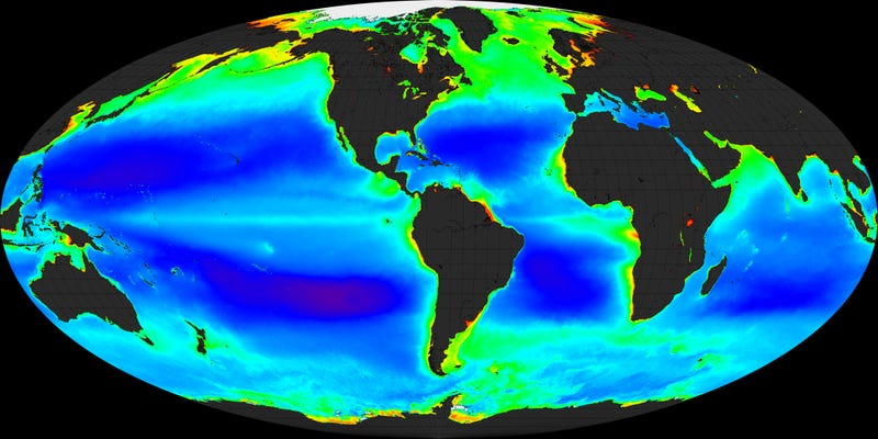 Global chlorophyll concentrations in Earth's oceans as determined by satellites.
