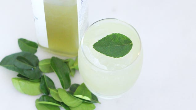 Make Quick, Vibrant Infusions by Blending Leaves Into Booze