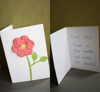 Make plantable greeting cards using seed paper if youve run out of clever greeting card ideas try a card you can plant into the ground craft blog make and takes demonstrates how to make seed paper m4hsunfo