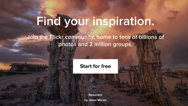 Flickr Could Be In Serious Trouble