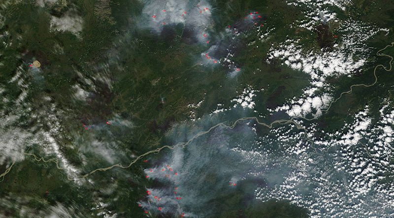 Illustration for article titled Wildfires Have Devastated 5 Million Acres, and Alaska is Still Burning