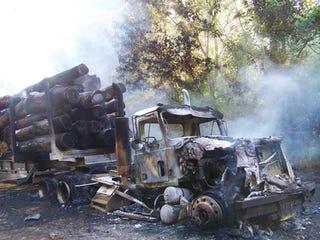 Illustration for article titled Logging Truck Incinerated After Driver Hooks 7200V Power Line