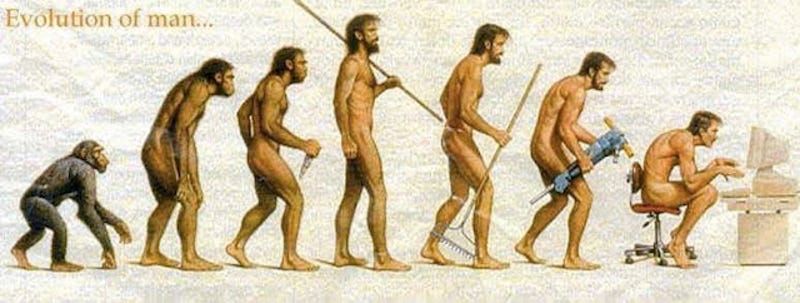 Image result for evolution into from standing back to sitting