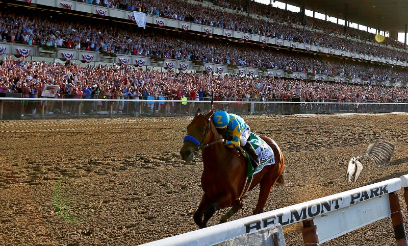 Illustration for article titled This Is What It Would Look Like If American Pharoah Raced Secretariat