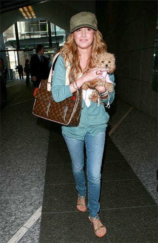 Illustration for article titled Vuitton, Small Dog... Ashley Tisdale Has All The Annoying Accessories