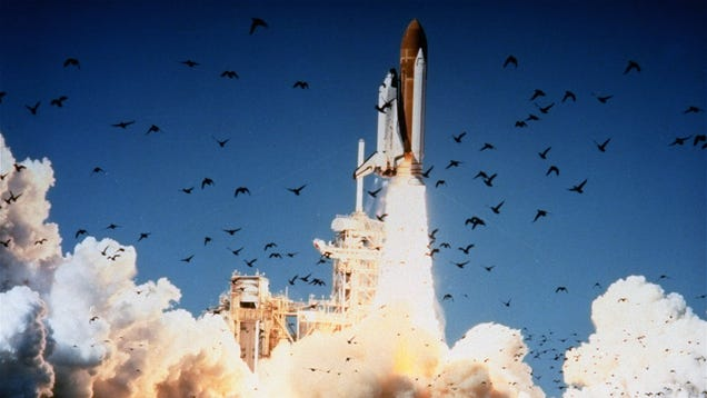 space shuttle challenger tragedy address - photo #33