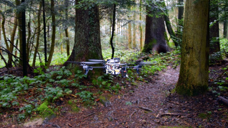 Illustration for article titled These Rescue Drones Search Forest Trails Like Robot Rangers