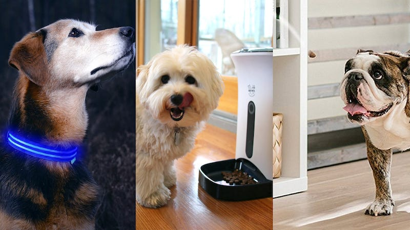 Illustration for article titled Six Great Smart Devices For Your Furry Friend