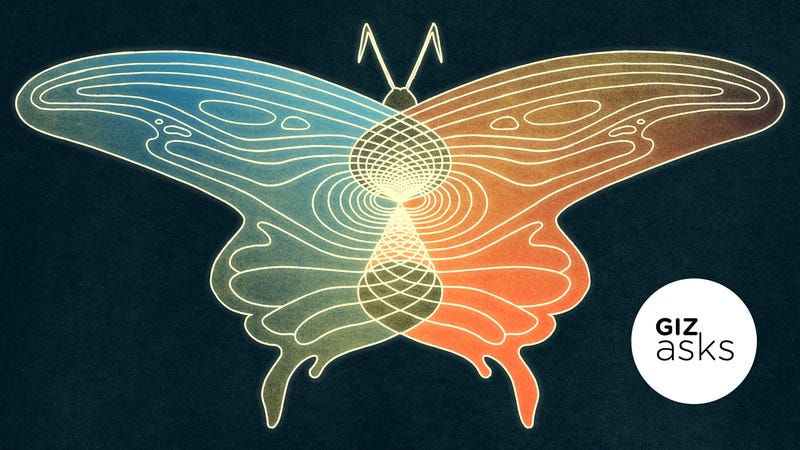 Illustration for article titled Is the Butterfly Effect Real?