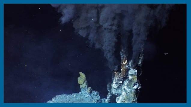 'It Really Is Otherworldly': What It's Like to Visit the Hot Springs of the Deep Sea