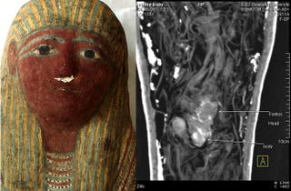 Illustration for article titled Ancient Mummified Fetus Found in Tiny Egyptian Sarcophagus