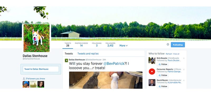 Illustration for article titled Why Does Danica Patrick's Dog Have More Twitter Followers Than Me?