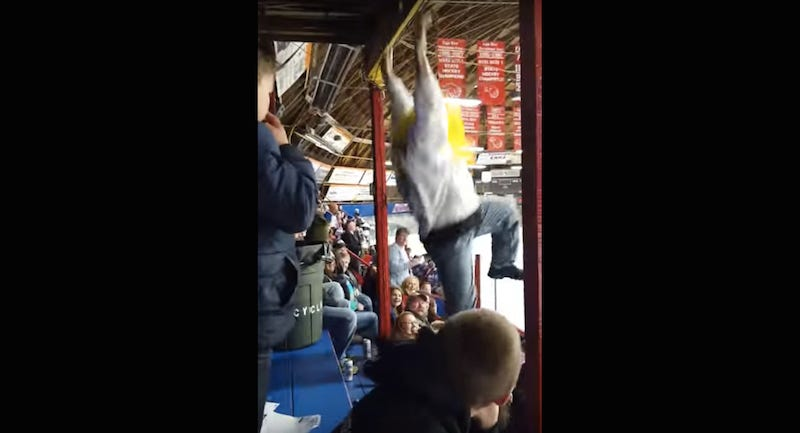 Illustration for article titled Idiot Hockey Fan Dangles From Rafters, Falls On Woman