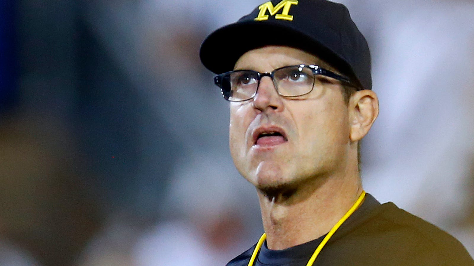 Jim Harbaugh Wife Children Brothers Family Salary Biography