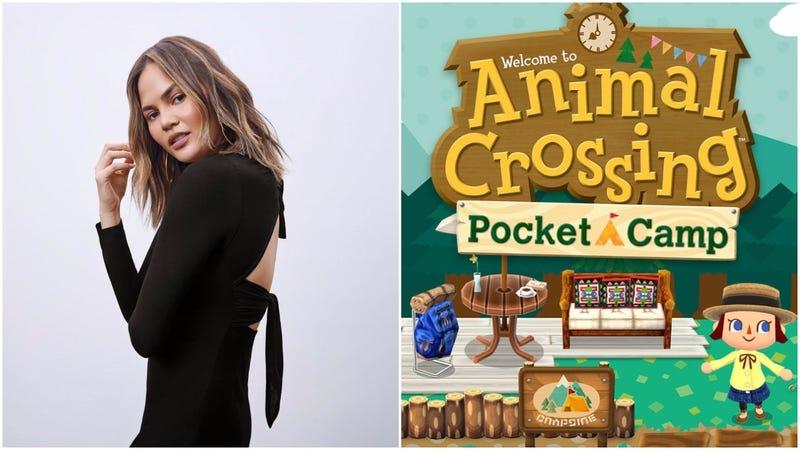 [Image: chrissyteigen   Animal Crossing: Pocket Camp]