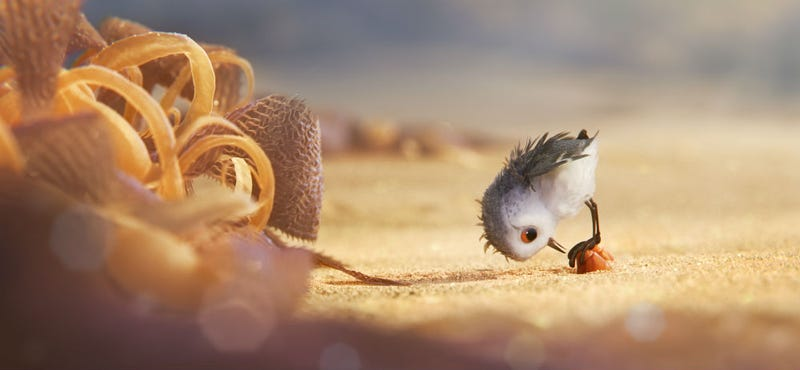 An image from Pixar's latest short, Piper. Image: Disney
