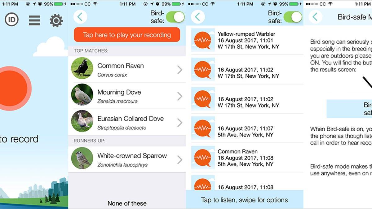 Shazam for Birds: Three Apps That Recognize Bird Calls