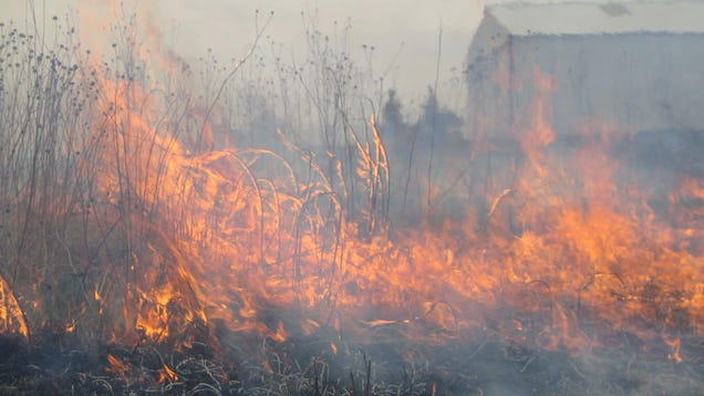 The Midwest's Active Fire Season Is a Warning