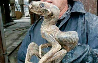 This ol' chap was pulled from the sands of a diamond mine in Siberia earlier this week. (Image: Siberian Times)
