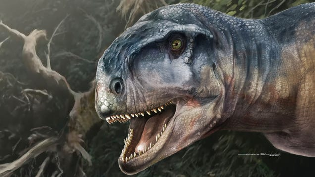Dinosaur Found in Argentina Looked Like a Bumpy-Headed T. Rex