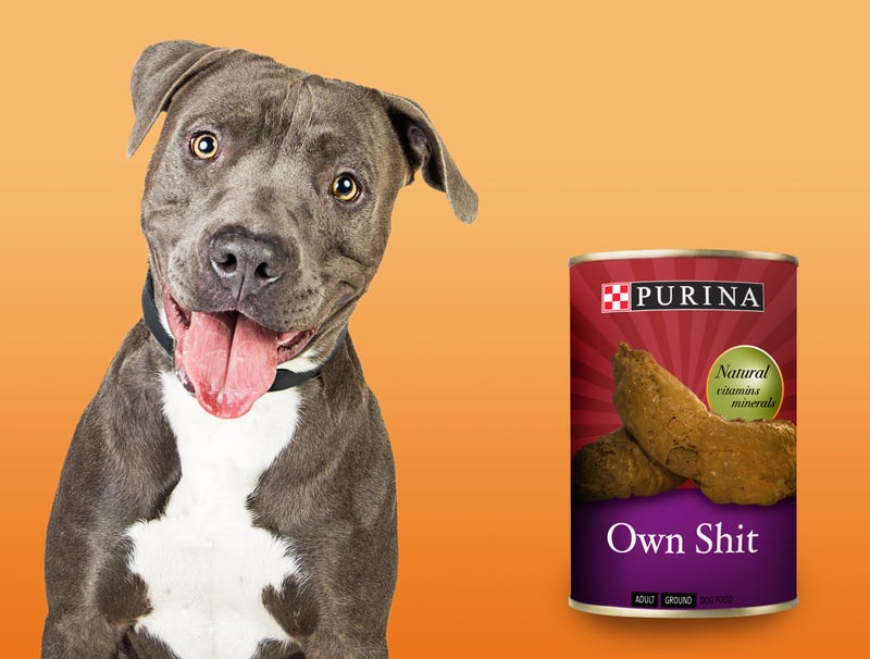 Illustration for article titled Purina Introduces 'Own Shit' Dog Food Flavor