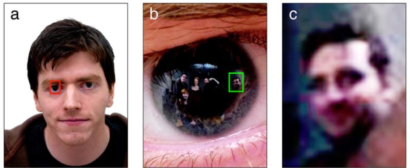 Illustration for article titled eye of the beholder