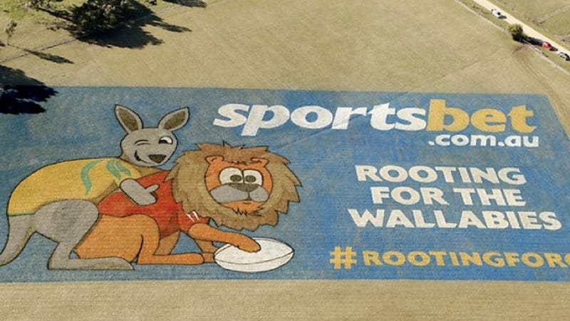 Illustration for article titled Giant Rugby Ad in Australia Features a Wallaby Probably Raping a Lion