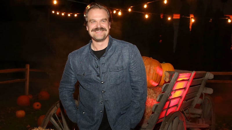 Illustration for article titled David Harbour honors retweets, officiates wedding in Chief Hopper costume