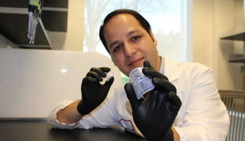 Stanford research associate Rahim Esfandyarpour with the lab-on-a-chip Image: Zahra Koochak/Stanford School of Medicine