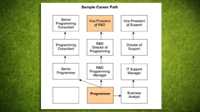 How To Find A Career Path  CityEsporaCo