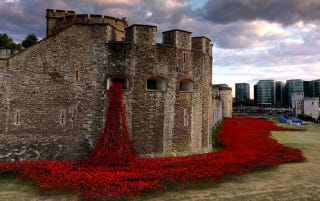 Illustration for article titled 888,246 Handmade Poppies Surround the Tower of London to Commemorate WWI