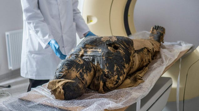 This Is the First Known Pregnant Mummy