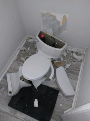 Illustration for article titled lucky the toilet wasn't occupied