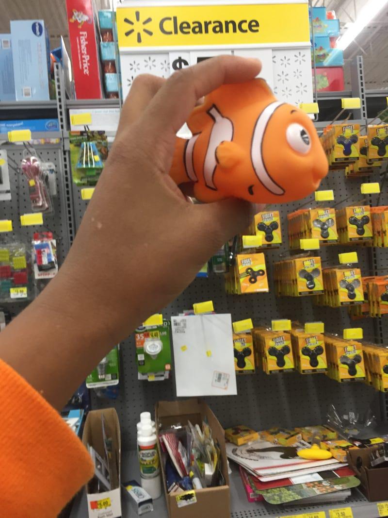 Illustration for article titled I found Nemo
